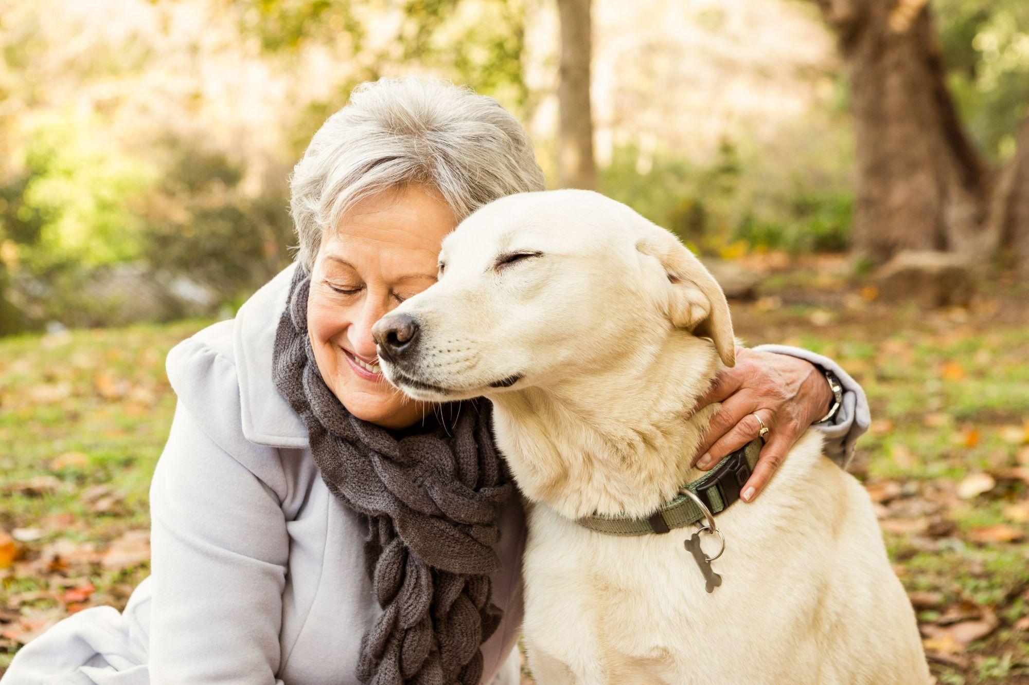 Descubra os maiores benefícios da terapia com cachorros para idosos